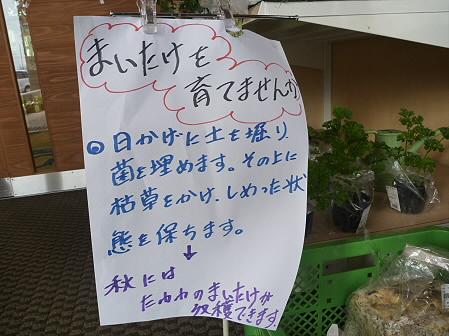 物産館あすぴーての野菜11(2011.5.7)