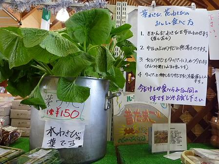 物産館あすぴーての野菜13(2011.5.7)
