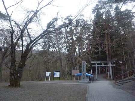 桜松公園の桜08(2011.5.11)