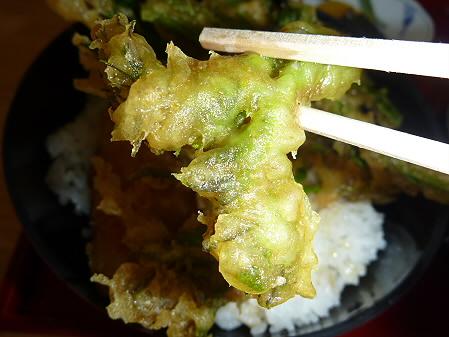 松川荘 いわなと山菜天丼06(2011.5.15)