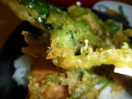 松川荘 いわなと山菜天丼07(2011.5.15)