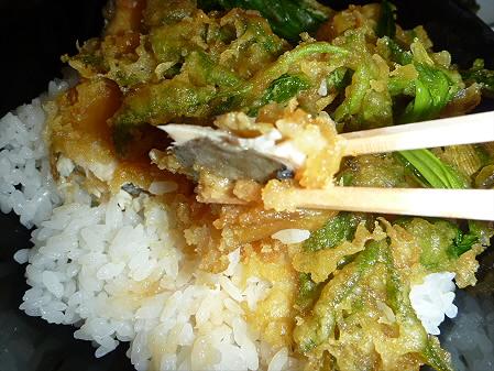 松川荘 いわなと山菜天丼08(2011.5.15)