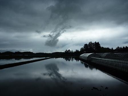 空と雲と田と01(2011.5.21)