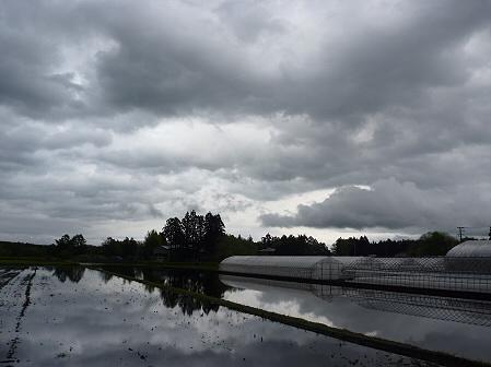 空と雲と田と02(2011.5.21)