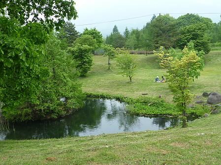八幡平市桜公園の様子09(2011.6.4)