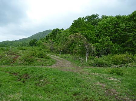 七時雨山開き登山04(2011.6.5)