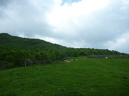 七時雨山開き登山11(2011.6.5)