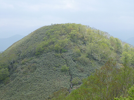 七時雨山開き登山39(2011.6.5)