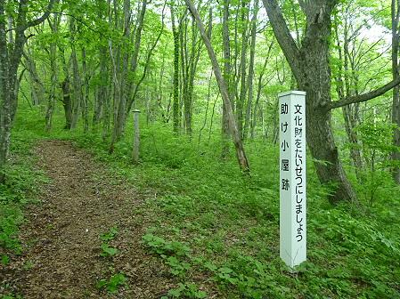 七時雨山開き登山78(2011.6.5)