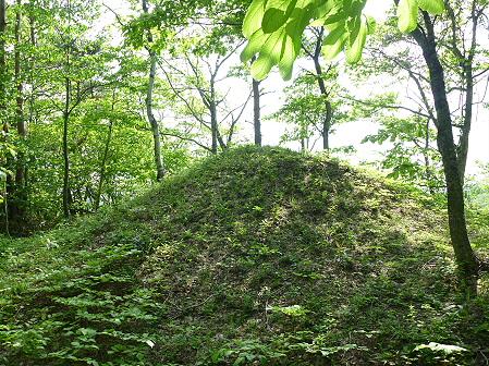 七時雨山開き登山90(2011.6.5)