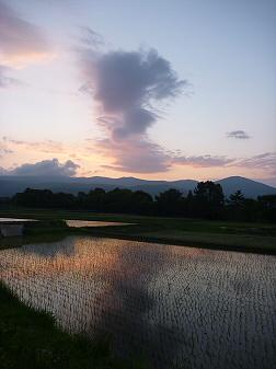 空と雲と田と08(2011.6.6)