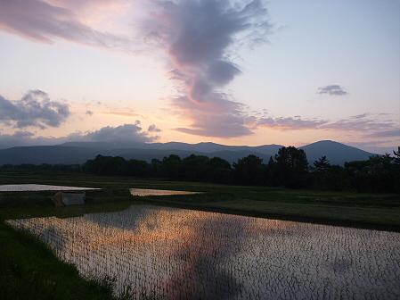 空と雲と田と09(2011.6.6)