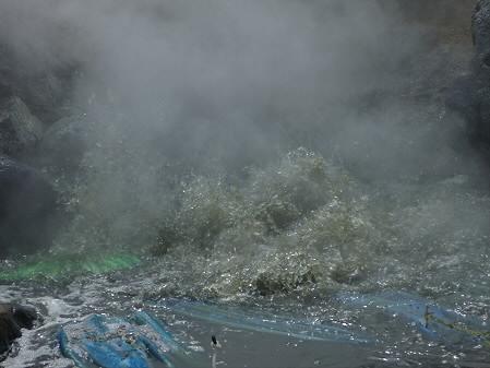 樹海ライン10(2011.6.12)