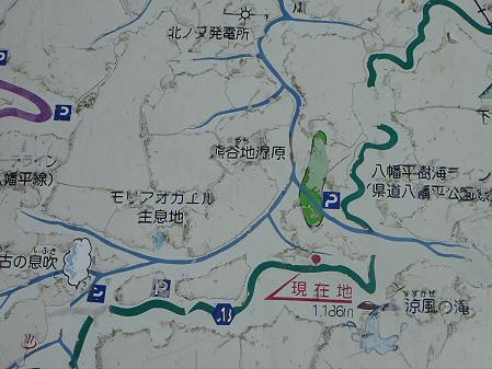 樹海ライン20(2011.6.12)