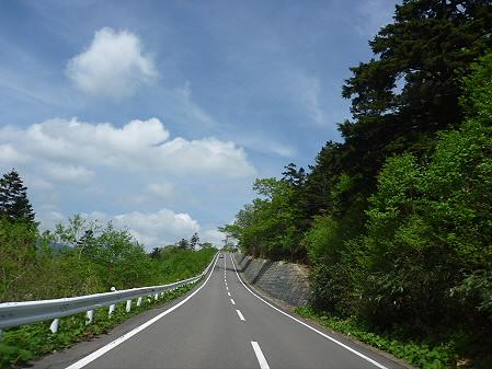 樹海ライン26(2011.6.12)