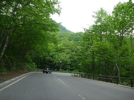 樹海ライン48(2011.6.12)