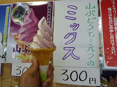 樹海ライン49(2011.6.12)