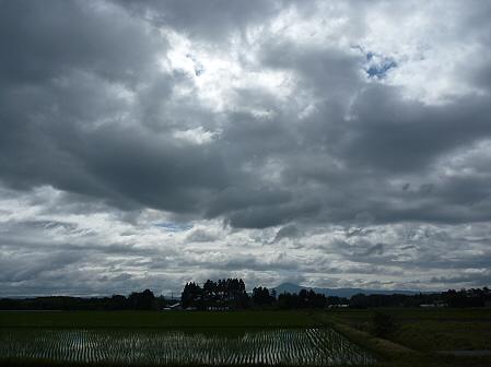 空と雲と田と10(2011.6.15)