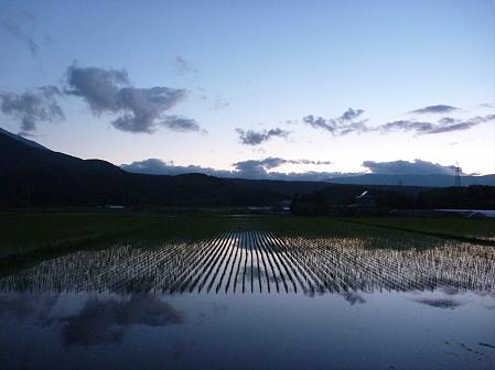 空と雲と田と14(2011.6.15)