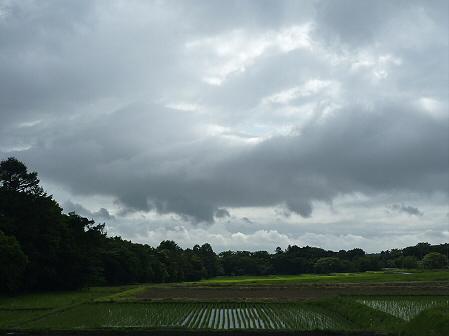 空と雲と田と17(2011.6.17)