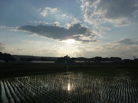 空と雲と田と18(2011.6.17)