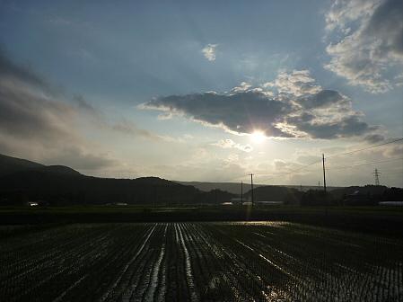 空と雲と田と19(2011.6.17)