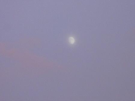 夕方の岩手山パノラマライン19(2011.7.12)