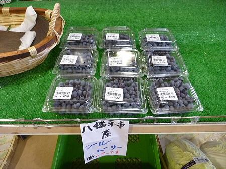 物産館あすぴーての野菜04(2011.7.20)