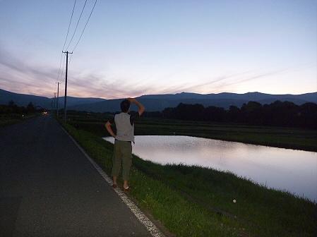 夕暮れの水田01(2011.7.21)