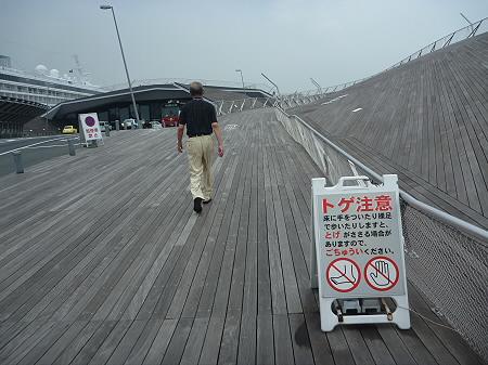 大さん橋14(2011.7.29)