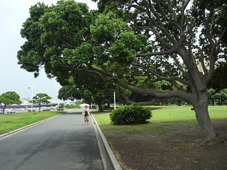 山下公園へ11(2011.7.29)
