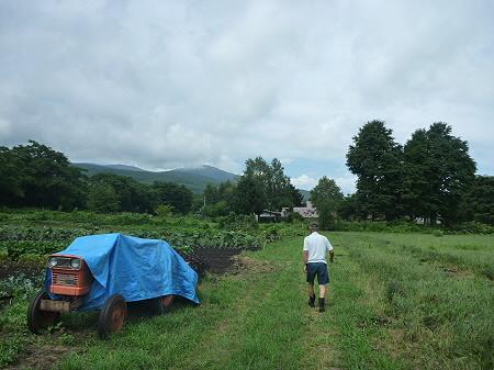 三田村さんの畑03(2011.8.19)
