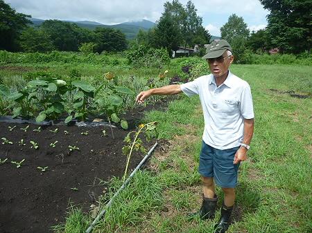 三田村さんの畑04(2011.8.19)