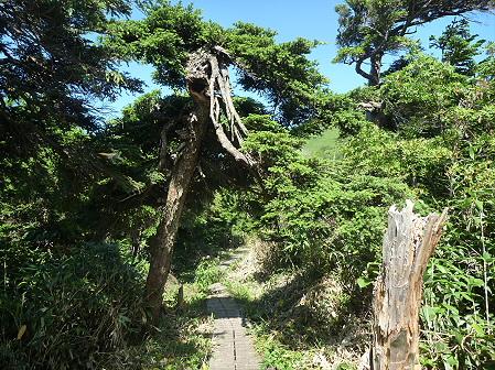 快晴の茶臼岳18(2011.9.12)