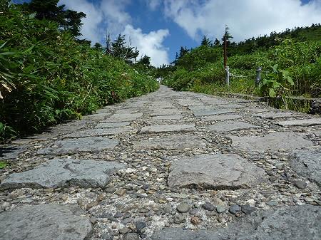 快晴の八幡平山頂08(2011.8.27)