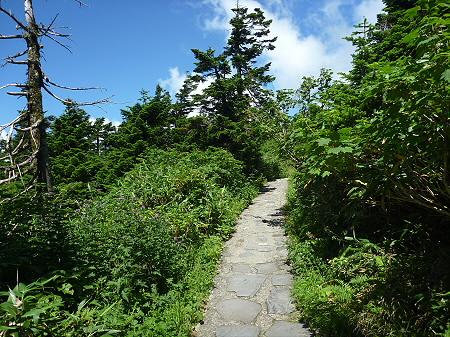 快晴の八幡平山頂14(2011.8.27)