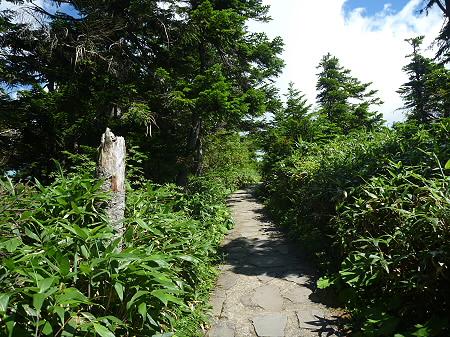 快晴の八幡平山頂20(2011.8.27)