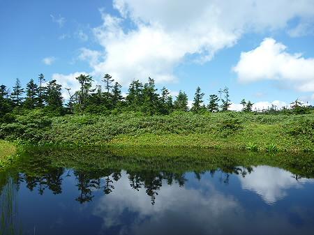 快晴の八幡平山頂74(2011.8.27)