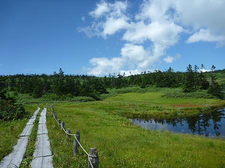 快晴の八幡平山頂84(2011.8.27)