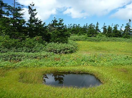 快晴の八幡平山頂87(2011.8.27)
