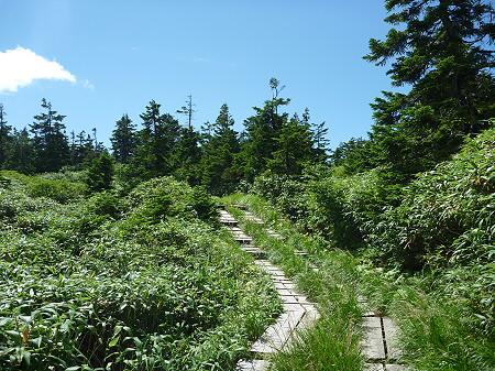 快晴の八幡平山頂88(2011.8.27)