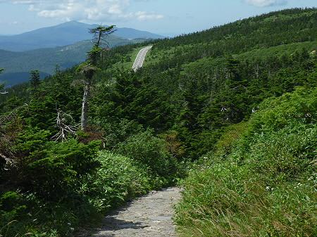 快晴の八幡平山頂97(2011.8.27)