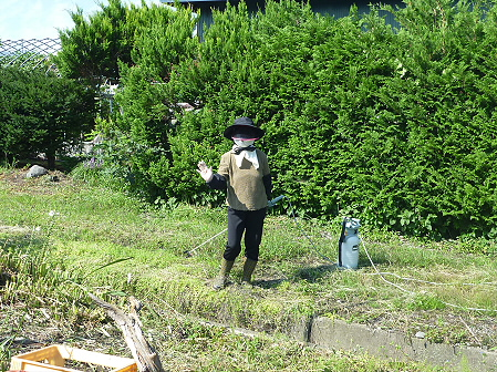 平笠の犬小屋スリー03(2011.8.27)