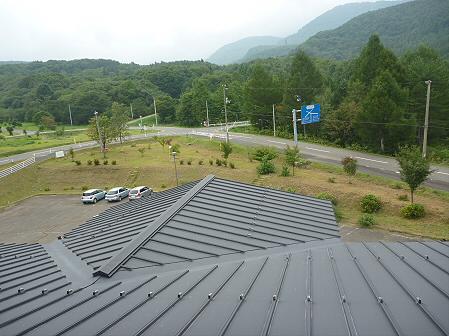 県民の森の竹トンボ11(2011.9.17)