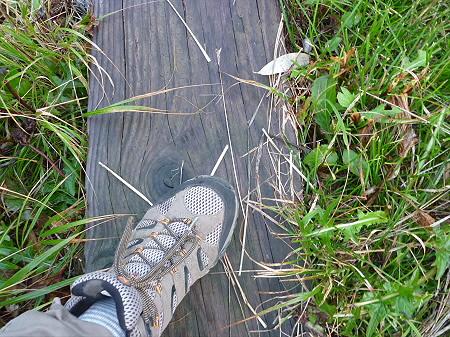 朝の黒谷地湿原01(2011.9.24)