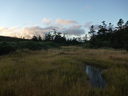 朝の黒谷地湿原10(2011.9.24)