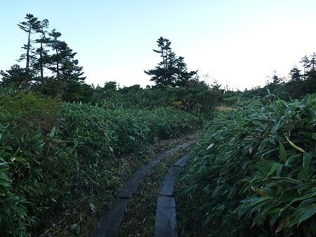 朝の黒谷地湿原12(2011.9.24)