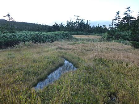 朝の黒谷地湿原24(2011.9.24)