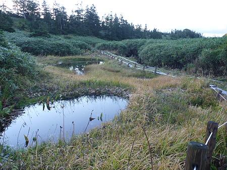 朝の黒谷地湿原25(2011.9.24)