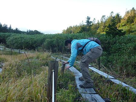 朝の黒谷地湿原26(2011.9.24)
